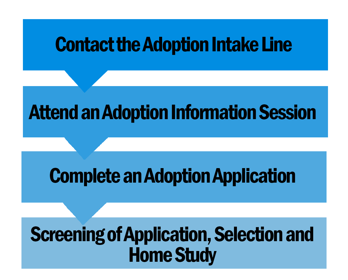 adoption process_1
